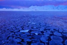Znaleziono życie wjeziorze pod lodem Antarktydy