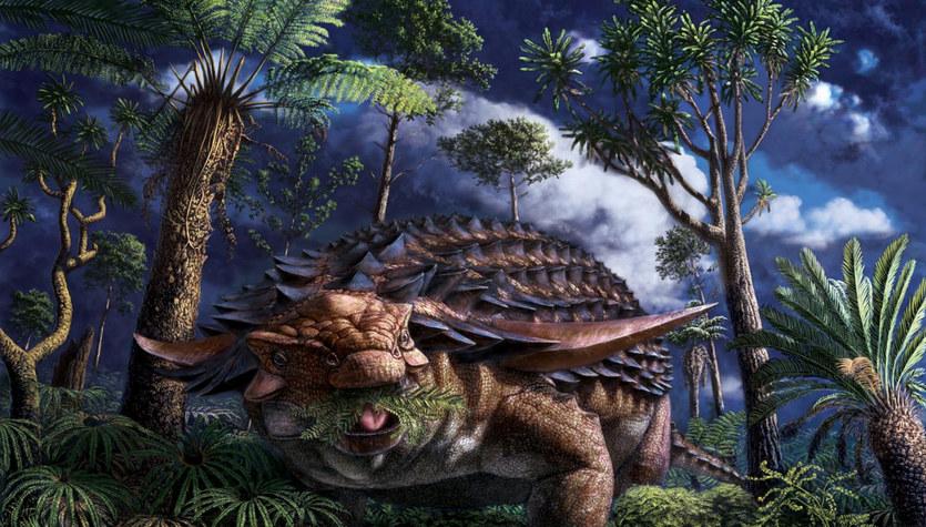 Znamy ostatni posiłek dinozaura. Jak wyglądał?