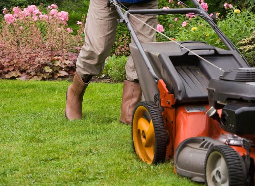 Znane są przypadki osób, które zasłabły przy... koszeniu trawnika /123RF/PICSEL