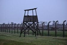 Znieważył pomnik w Auschwitz. Izraelczyk zapłaci 5 tys. zł