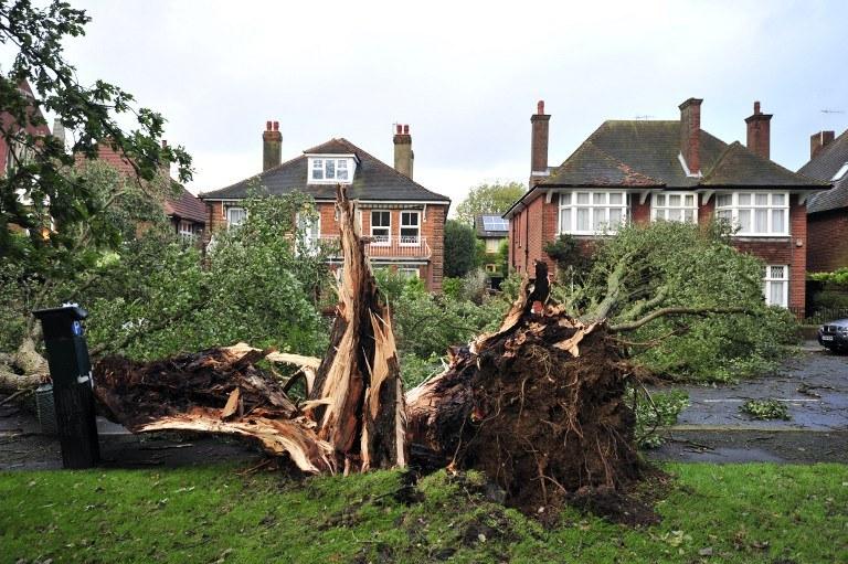 Zniszczenia po przejściu huraganu /AFP