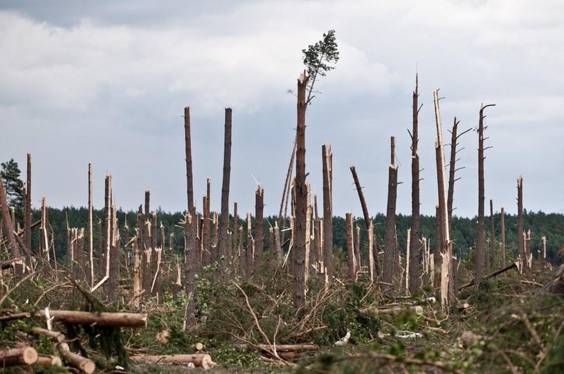 Zniszczenia po przejściu trąby powietrznej /Tymon Markowski /East News