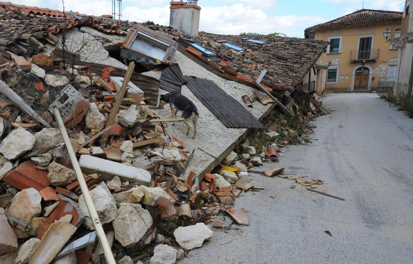 Zniszczenia po trzęsieniu /fot. z 2009 roku /AFP