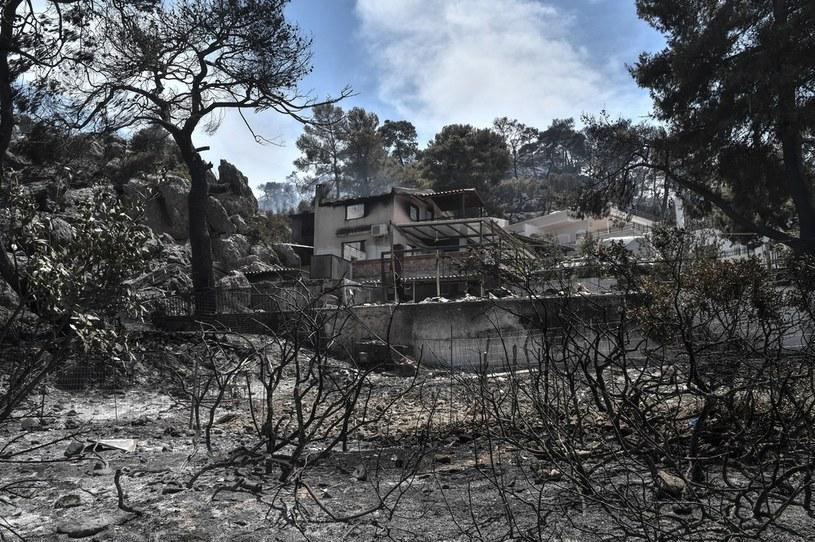Zniszczenia wskutek pożarów /AFP
