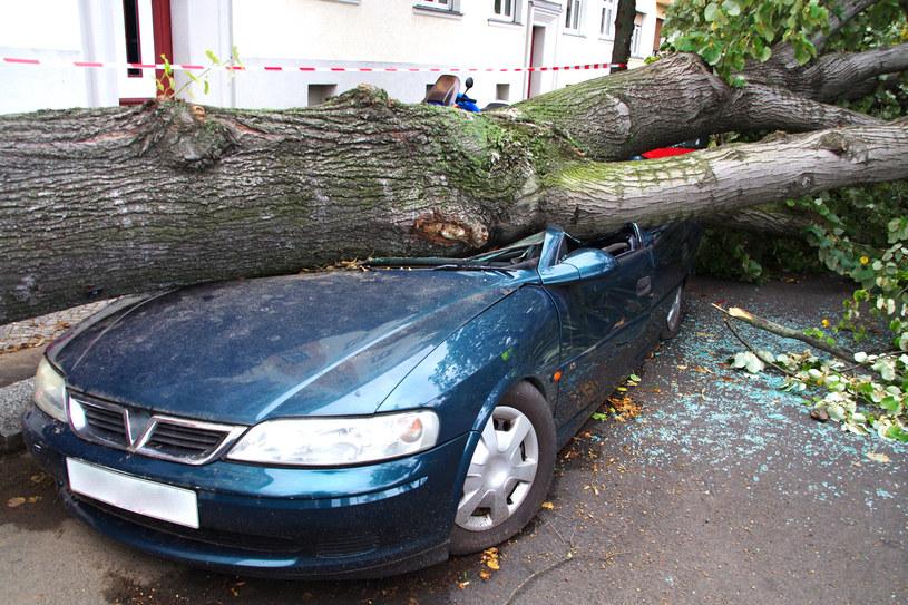 Zniszczenie wywoływane przez huragany będą tylko coraz większe /123RF/PICSEL