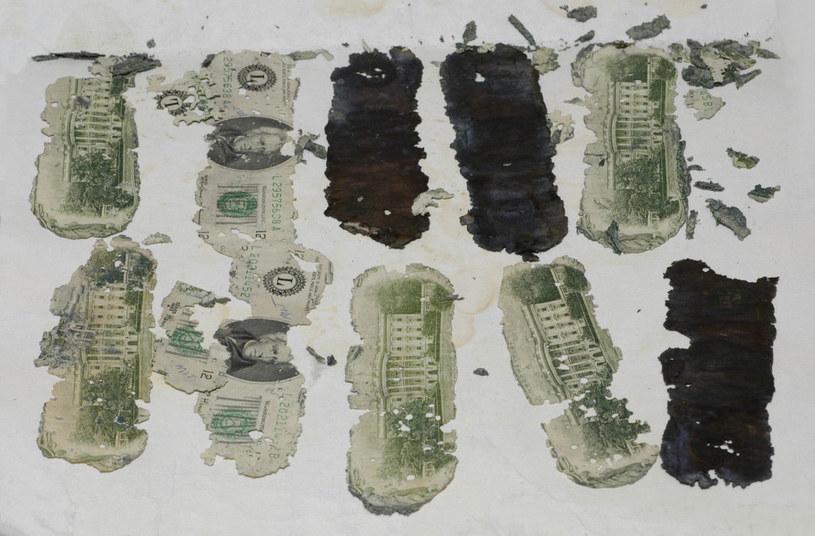Zniszczone banknoty znalezione przez ośmioletniego chłopca nad rzeką Columbia /Wikimedia Commons /domena publiczna