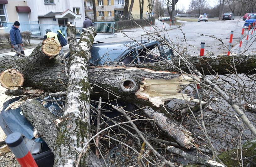 Zniszczony samochód przy ulicy Świtezianki w Krakowie /Jacek Bednarczyk /PAP