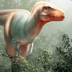 """""""Żniwiarz śmierci"""" - nowy gatunek tyranozaura"""