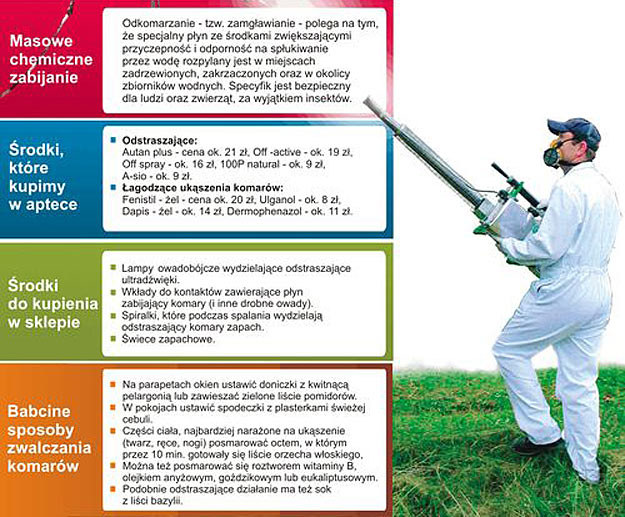 Zobacz, jak walczyć z komarami /Super Nowości