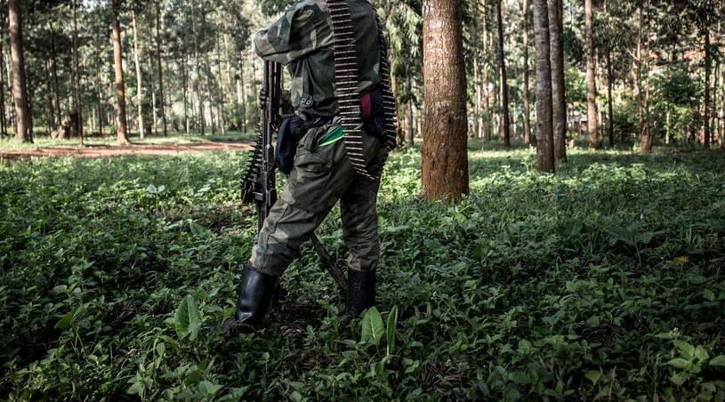 Żołnierz w Demokratycznej Republice Konga /JOHN WESSELS /AFP