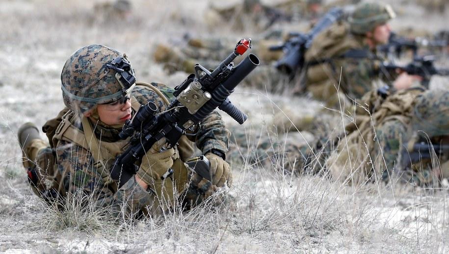 Żołnierze NATO podczas ćwiczeń na flance wschodniej /ROBERT GHEMENT /PAP/EPA