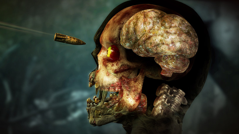 Zombie Army 4: Dead War - recenzja /materiały prasowe