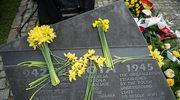 Żonkile w geście pamięci dla bohaterów getta warszawskiego