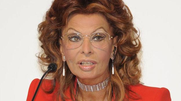 Zrobił ich tysiące i nikt ich nie widział - powiedziała o zdjęciach Eisenstaedta Sophia Loren /AFP
