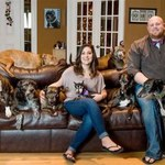 Zrobili sobie łóżko, w którym mieści się ich osiem psów!
