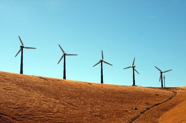Żródła energiii odnawialnej stają się coraz popularniejsze /AFP