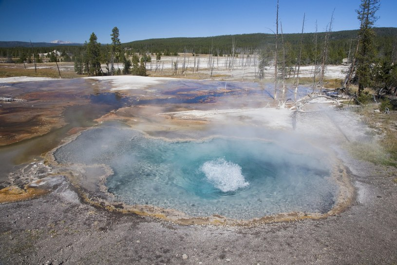 Źródła na terenie Yellowstone /FLPA /East News