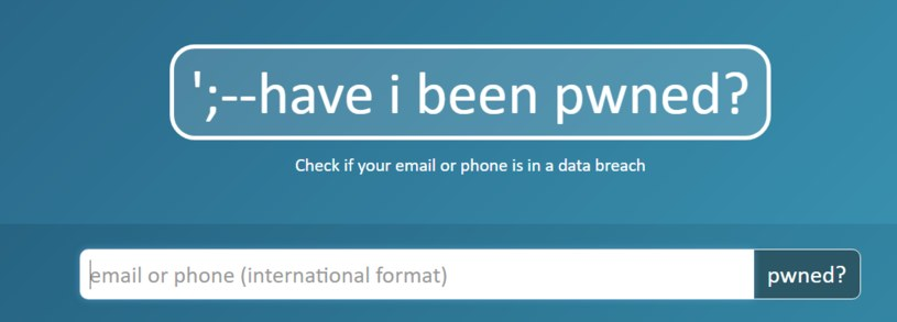 Zrzut ekranu ze strony HIBP.com /INTERIA.PL