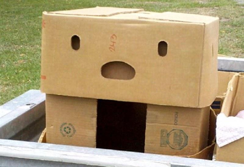 Zszokowane pudełko /Wikipedia