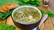 Zupa z pokrzyw - nieoceniona po zimie