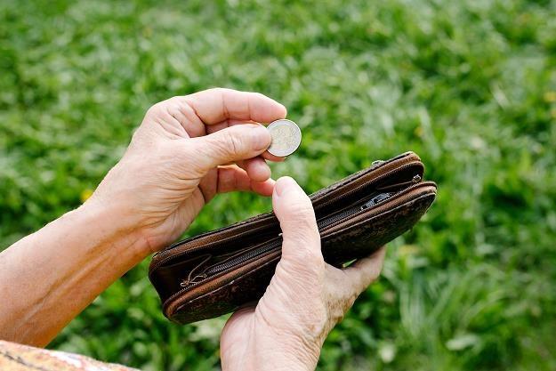 """ZUS-owi grozi """" niewypłacalność""""? /©123RF/PICSEL"""