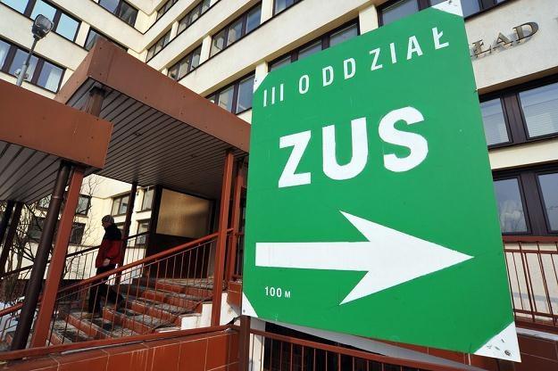 ZUS węszy i idzie do prokuratury /fot. Lech Gawuc /Reporter