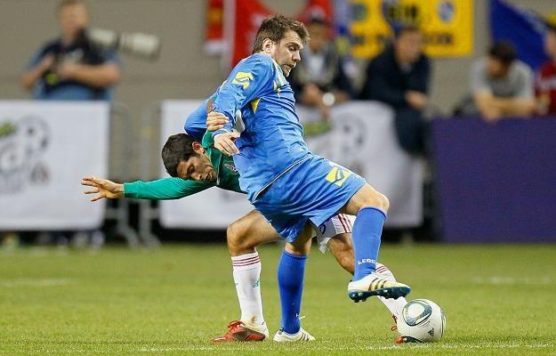 Zvjezdan Misimovic (z prawej) to jedna z gwiazd reprezentacji Bośni i Hercegowiny /AFP