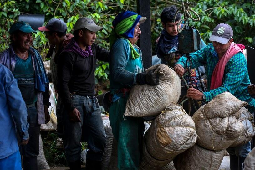 """Związki zawodowe i organizacje pomocy uchodźcom mówią o """"nowoczesnym niewolnictwie"""" /Joaquin Sarmiento /East News"""