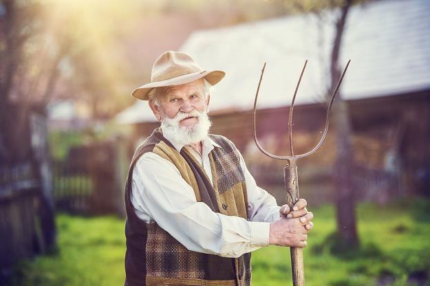 Związkowcy nie zgodzą się na zabranie rolnikom emerytur wypłacanych przez ZUS /©123RF/PICSEL