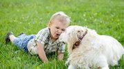 Zwierzak- najlepszy przyjaciel dziecka