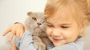 Zwierzak - najlepszy przyjaciel dziecka