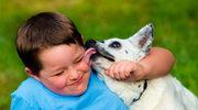 Zwierzęta chronią przed uczuleniem?