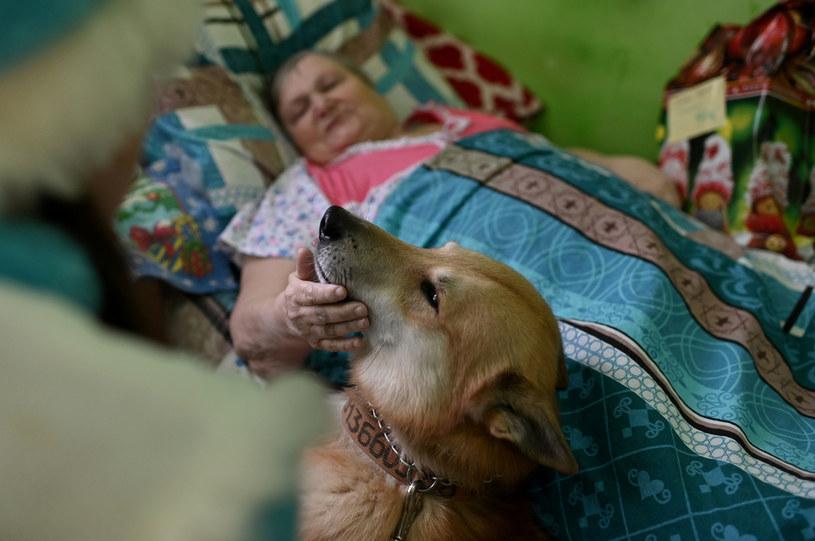 Zwierzęta często są prezentem dla osób starszych i samotnych. Niekiedy okazuje się, że seniorzy nie potrafią zająć się nowym przyjacielem /ALEXEY MALGAVKO Archiwum: Reuters /Agencja FORUM