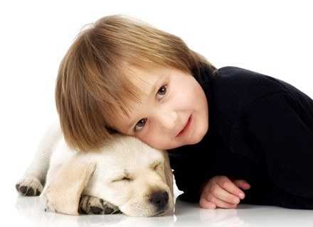 Zwierzęta w domu zwiększają czy zmniejszają ryzyko powstania alergii u dzieci? /© Panthermedia