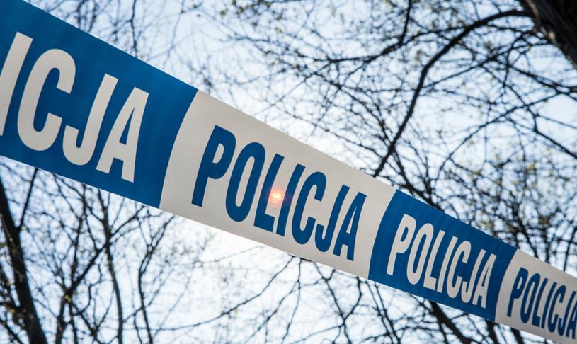 Zwłoki kobiety znaleziono w Lesie Kabackim w Warszawie. Zdjęcie ilustracyjne /Tomasz Jastrzebowski/REPORTER /Reporter