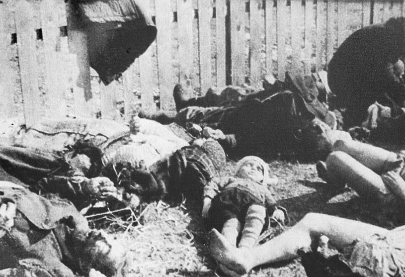 Zwłoki pomordowanych mieszkańców wsi Lipniki na Wołyniu /Marek Skorupski /Agencja FORUM