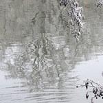 Zwłoki wędkarza znaleziono w Zalewie Wrocławskim