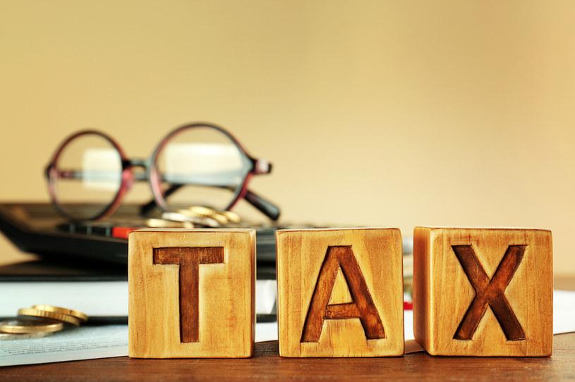 Zwolennicy podatku dochodowego krytykują ideę podatku przychodowego /123RF/PICSEL