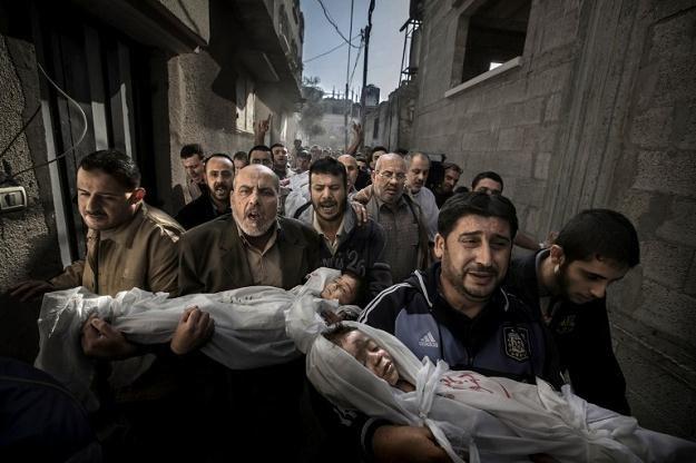Zwycięskie zdjęcie /AFP