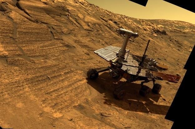 Życia cały czas szuka Curiosity /NASA