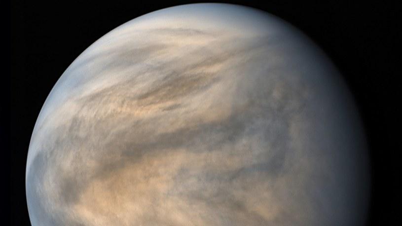 Życie na Wenus? W atmosferze wykryto ślady istnienia żywych organizmów /Geekweek
