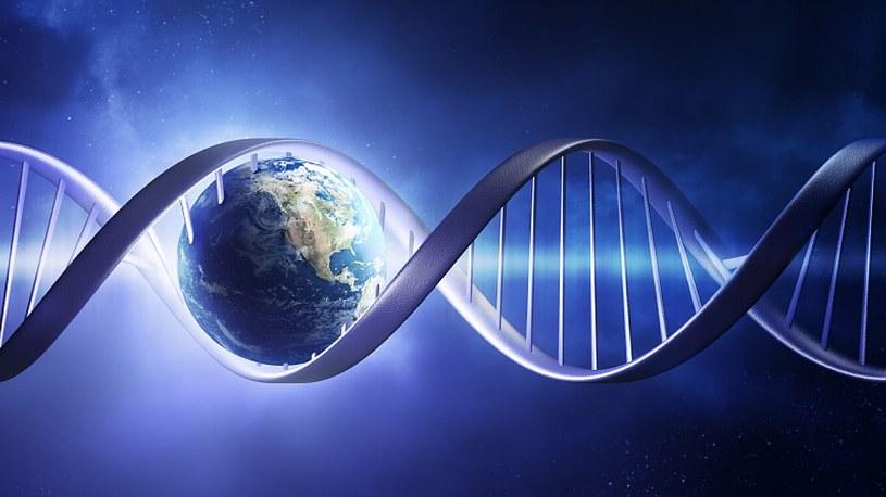 Życie na Ziemi było powszechne 3,5 miliarda lat temu. Nowe badania zaskakują /Geekweek