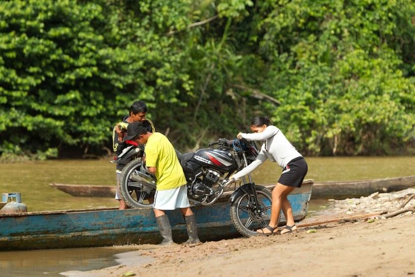 Życie w Amazonii jest tak samo ciekawe, jak... uciążliwe /123RF/PICSEL
