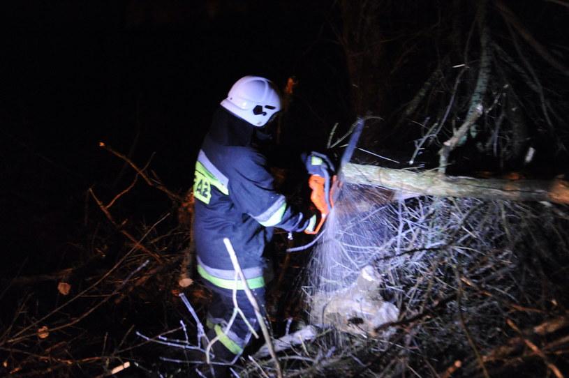 Żywioł zrywał dachy i łamał drzewa /Marcin Bielecki /PAP