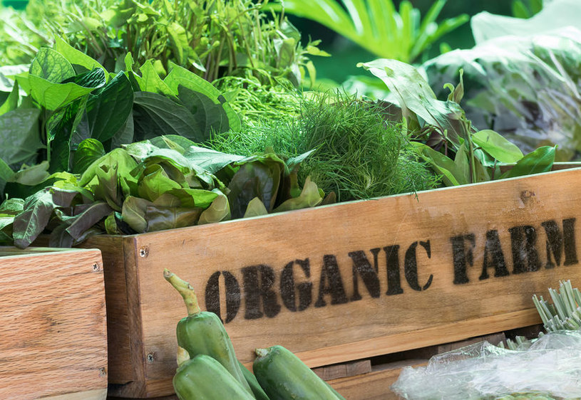 Żywność organiczna /©123RF/PICSEL